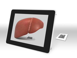 augmented-reality-ipad