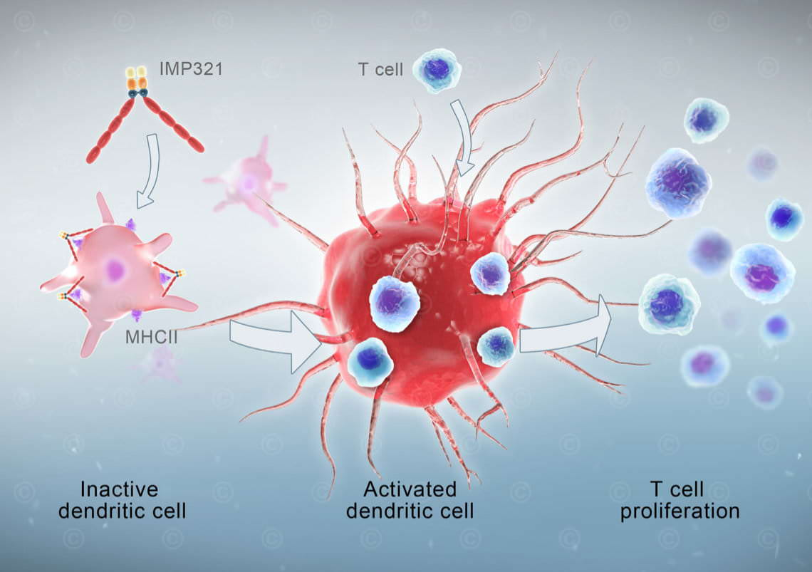 Mode-of-action cancer immunotherapy