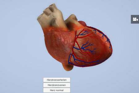 Interactive heart with Unity3D